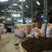 I denna moderna tefabrik  tillverkas bara svart te. 45 minuter tar det från färskt till torkat.